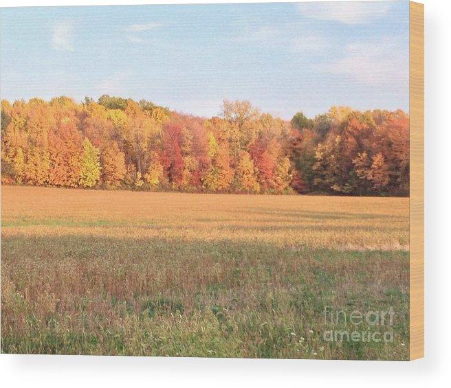 Landscape Wood Print featuring the photograph Autumn Beauty by Joseph Birt