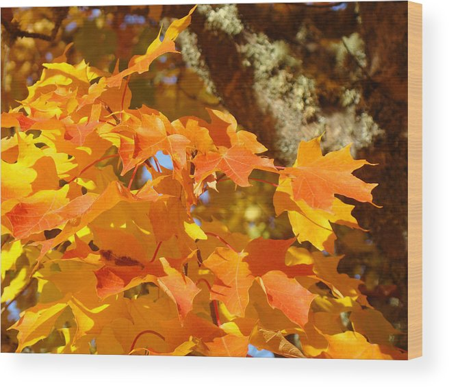 Yellow Wood Print featuring the photograph Autumn Leaves Art Print Yellow Orange by Baslee Troutman