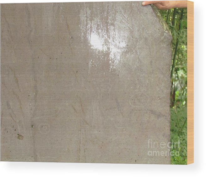 Panama Wood Print featuring the photograph Bariiles Stone Carving by Ted Pollard