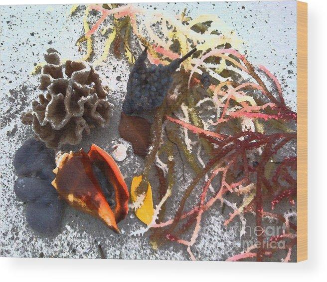 Beach Wood Print featuring the photograph Beach Treasures by Monika A Leon