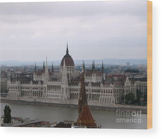Budapest Wood Print featuring the photograph Beautiful Budapest by Yury Bashkin