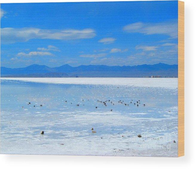 Bonneville Salt Flats Wood Print featuring the photograph Bonneville Salt Flats After The Rain by Matthew Peek