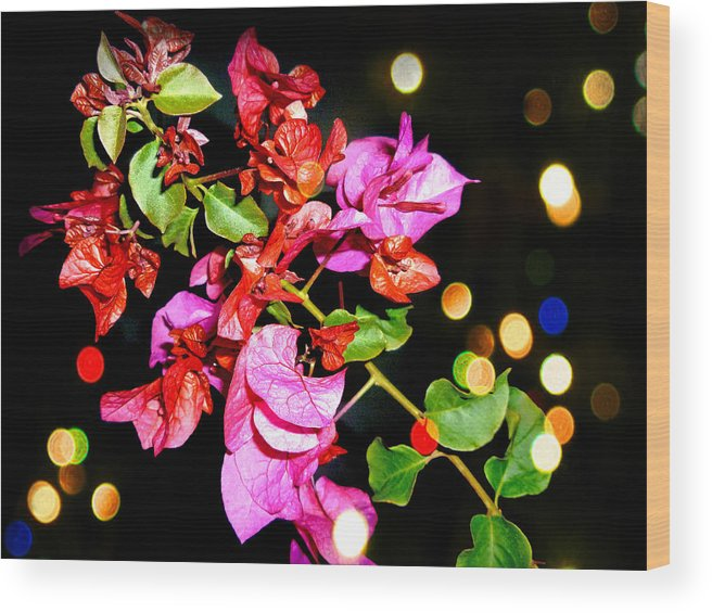 Flower Wood Print featuring the photograph Bougainvillea by Duy Nguyen