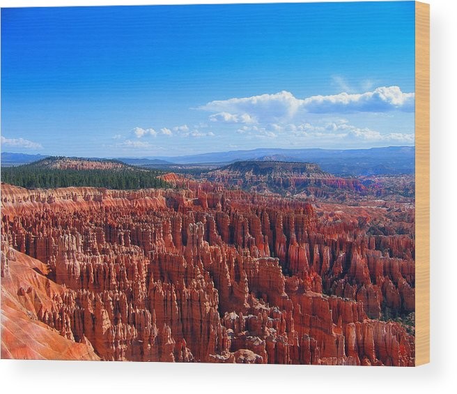Photograph Wood Print featuring the photograph Bryce Canyon Vista by Kathy Moll