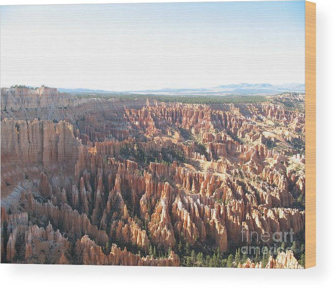 Rocks Wood Print featuring the photograph Bryce Canyon Scenic Overlook by Christiane Schulze Art And Photography