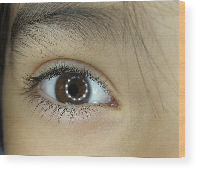 Eye Wood Print featuring the photograph Catch Light by Tina Camacho