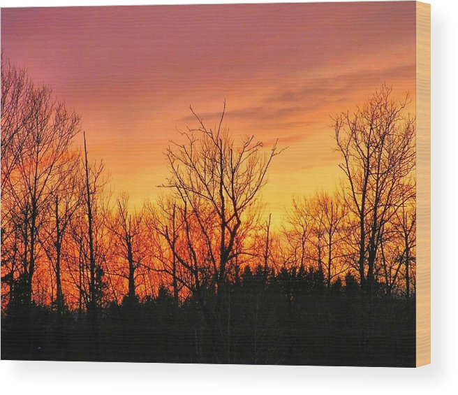 Sunset Wood Print featuring the photograph Colorful Winter Sunset by Gene Cyr