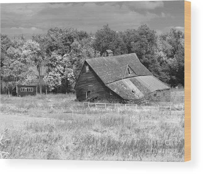 Barn Wood Print featuring the photograph Curtain In The Window-1 by M Dale