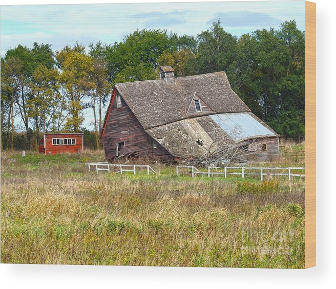 Barn Wood Print featuring the photograph Curtain In The Window by M Dale