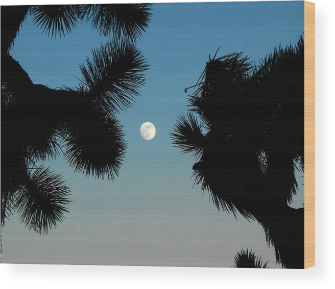 Joshua Tree Wood Print featuring the mixed media Desert Moon by Tim Anderson