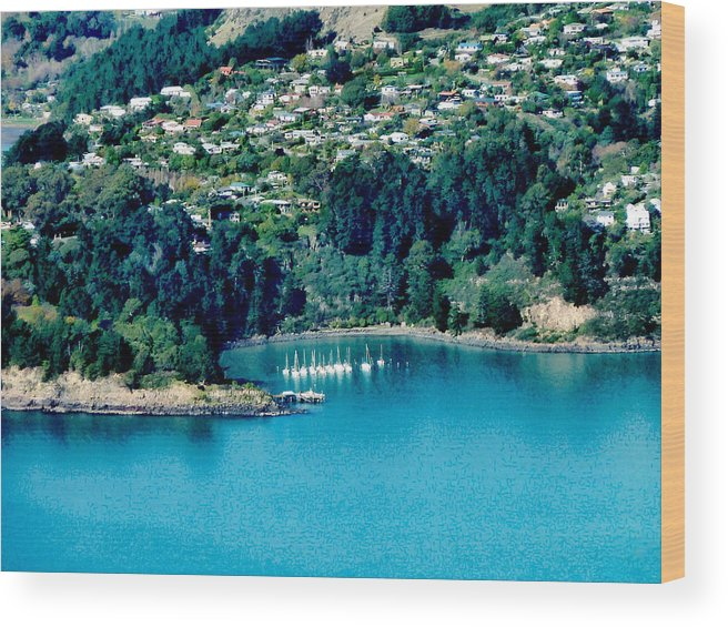 Banks Peninsula Wood Print featuring the photograph Diamond Harbour by Steve Taylor