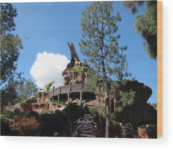 Amusement Wood Print featuring the photograph Disneyland Park Anaheim - 121220 by DC Photographer