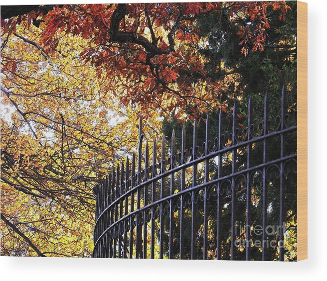 Fence Wood Print featuring the photograph Fence At Woodlawn Cemetery by Sarah Loft