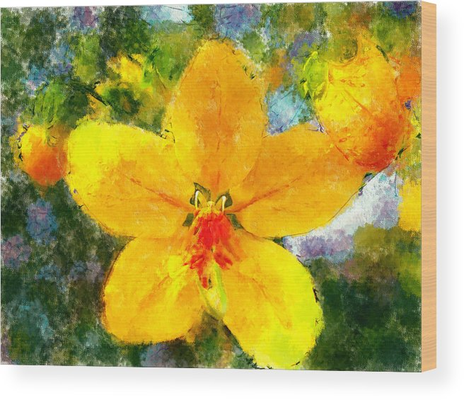 Flower Wood Print featuring the digital art Gold Medallion Flower by Bob Galka