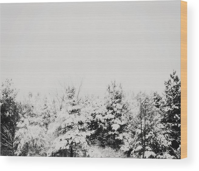 Minimal Wood Print featuring the photograph Gray December Winter Snow On Trees Photograph by Elle Moss