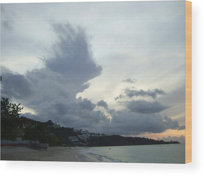 Wood Print featuring the photograph Hedgehog Cloud by Katerina Naumenko