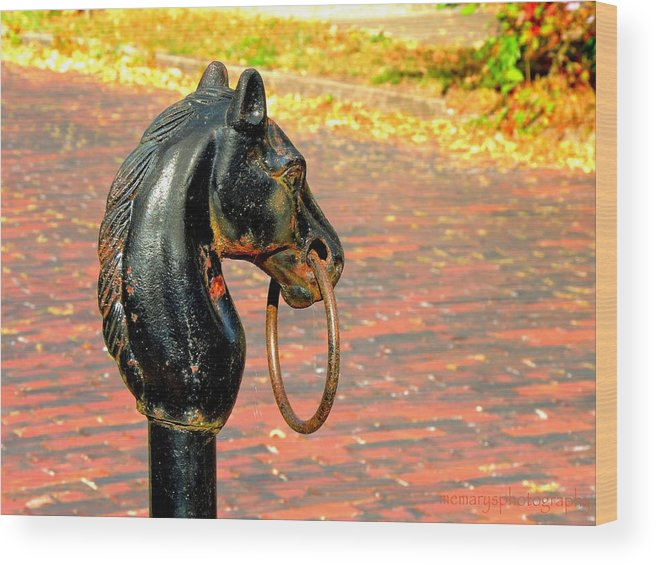 Horse's Head Wood Print featuring the photograph Hitching Post by Mary Williamson