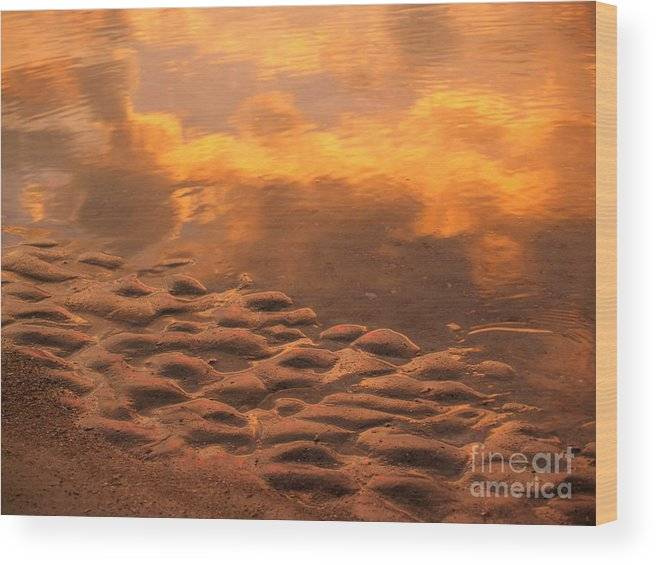 Sunrise Wood Print featuring the photograph Hunting Island Sunrise Reflections by Anna Lisa Yoder