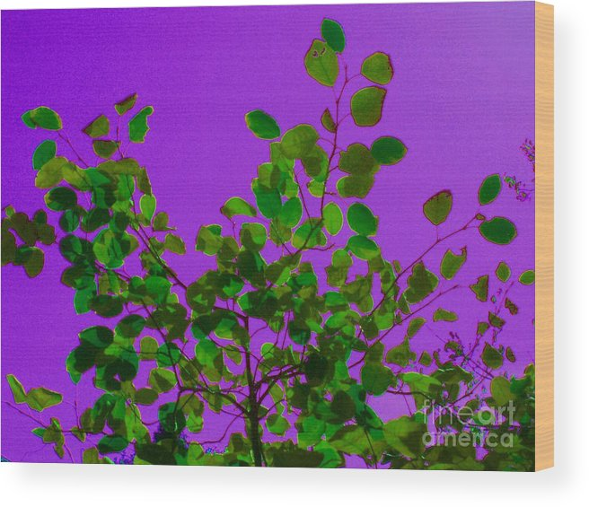Purple Wood Print featuring the photograph Leaves On A Purple Sky by Tahlula Arts