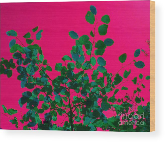 Abstract Wood Print featuring the photograph Leaves On Pink Back Lit Sky Abstract by Tahlula Arts