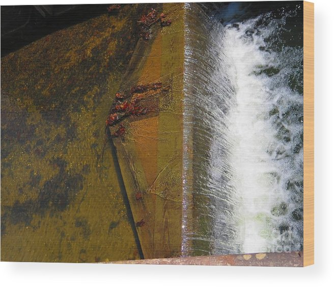 Water Wood Print featuring the photograph Lock Detail 06 by Rrrose Pix