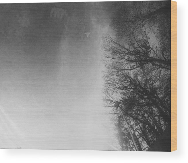 Car Wood Print featuring the photograph Looking Up At The Sky While Driving by J Riley Johnson