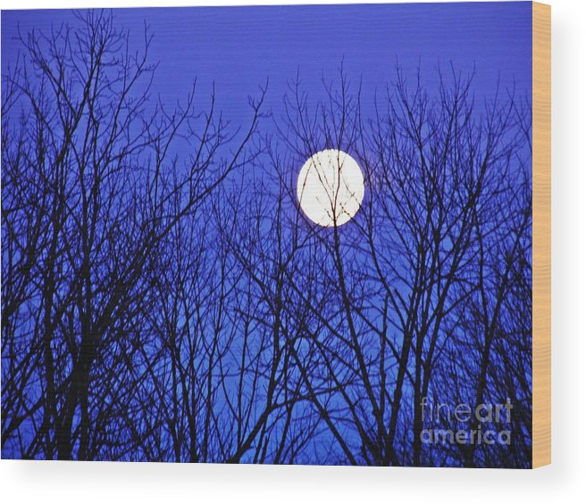 Moon Wood Print featuring the photograph Moon by Sarah Loft