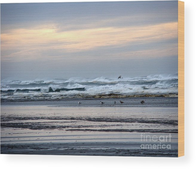 Seascape Wood Print featuring the photograph Morning Sunrise by Beverly Guilliams