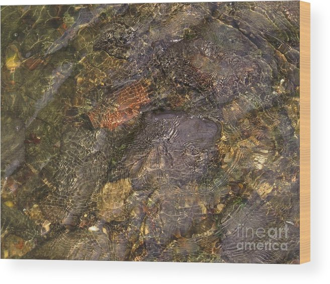 Water Wood Print featuring the photograph Mothers Abstract 06 by Rrrose Pix