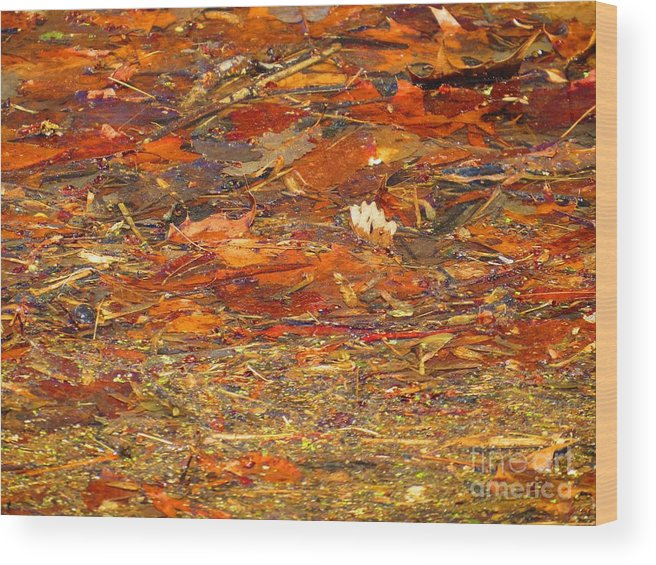 Abstract Wood Print featuring the photograph Mothers Abstract 07 by Rrrose Pix