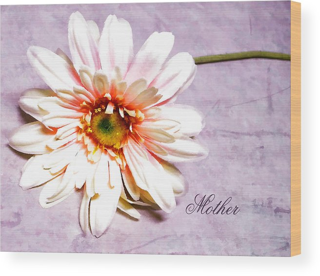 Pink Gerber Daisy. Gerber Daisy. Pink And White Flowers. Pink And White Petals. Green Stem. Word Art. Mother's Day Greeting Card. Greeting Card. Texture. Photography. Print. Canvas. Birthday Greeting Card. Nature. Wood Print featuring the photograph Mother's Gerber Daisy by Mary Timman