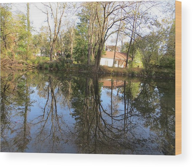 Reflection Wood Print featuring the photograph Natural Mirror by Sonali Gangane