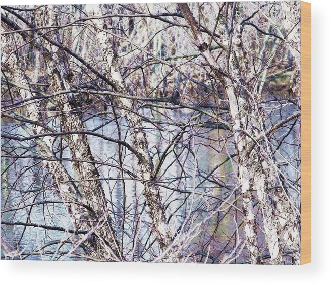 Waterscape Wood Print featuring the photograph Nature And Texture by Dave Dresser