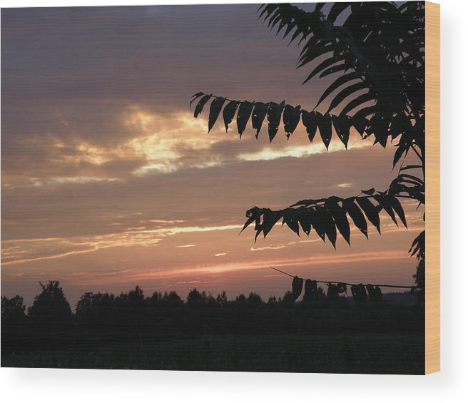 Nature Wood Print featuring the photograph Nc Sunset by Tina Camacho