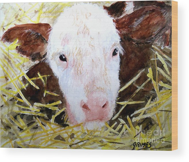 Calf Wood Print featuring the painting New Born On The Farm by Carol Grimes