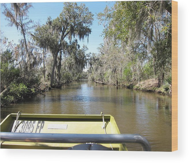 New Wood Print featuring the photograph New Orleans - Swamp Boat Ride - 1212122 by DC Photographer