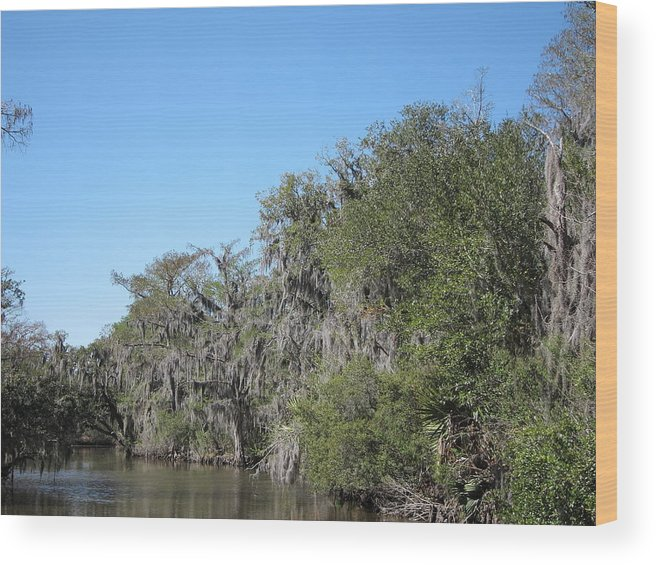 New Wood Print featuring the photograph New Orleans - Swamp Boat Ride - 1212130 by DC Photographer