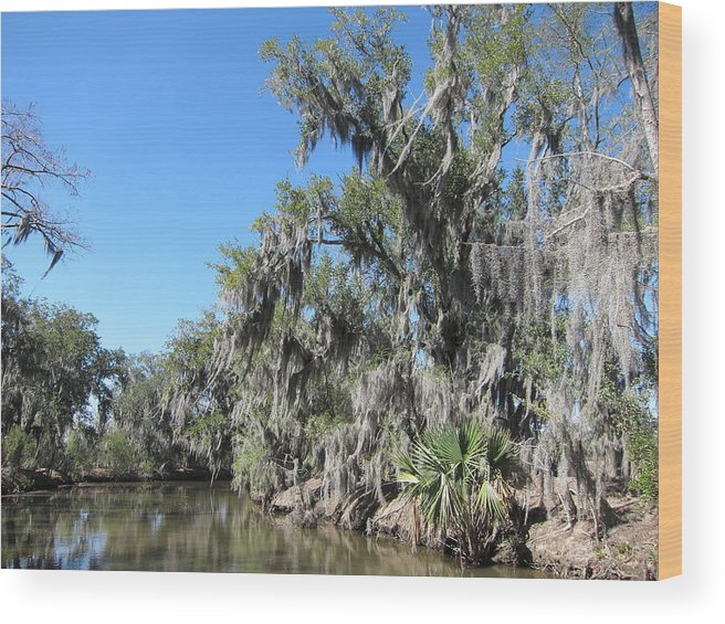 New Wood Print featuring the photograph New Orleans - Swamp Boat Ride - 1212135 by DC Photographer