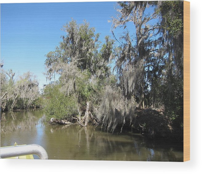 New Wood Print featuring the photograph New Orleans - Swamp Boat Ride - 1212141 by DC Photographer