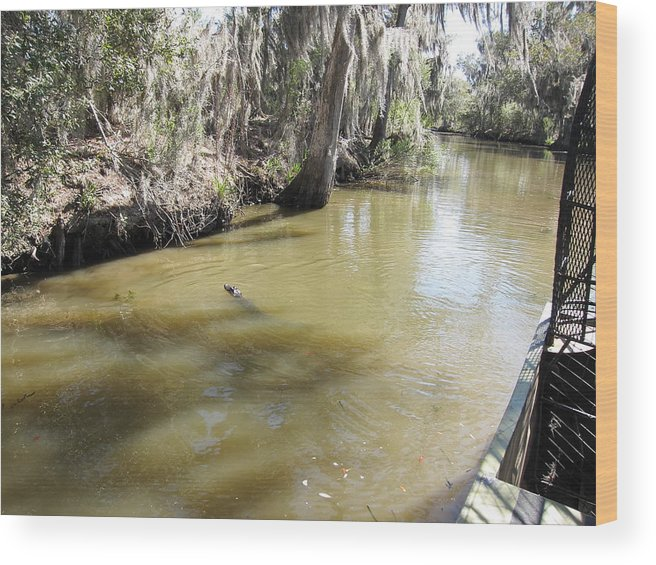 New Wood Print featuring the photograph New Orleans - Swamp Boat Ride - 1212145 by DC Photographer