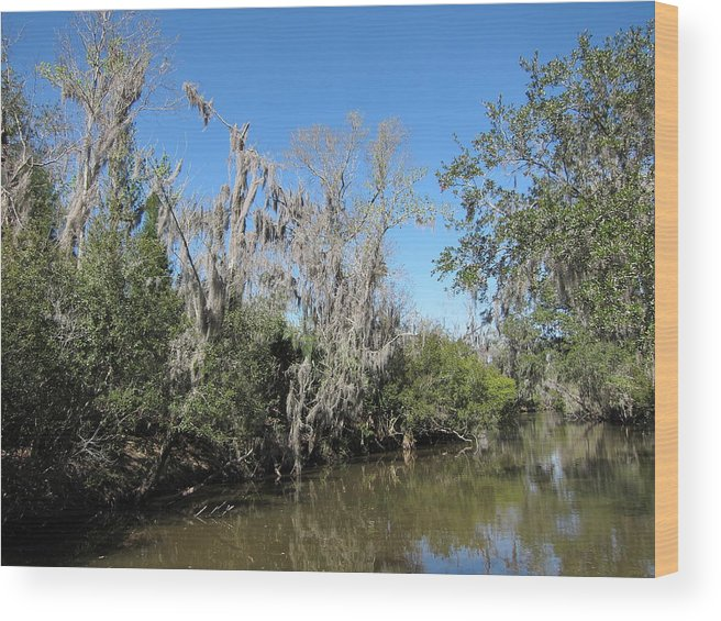 New Wood Print featuring the photograph New Orleans - Swamp Boat Ride - 1212146 by DC Photographer