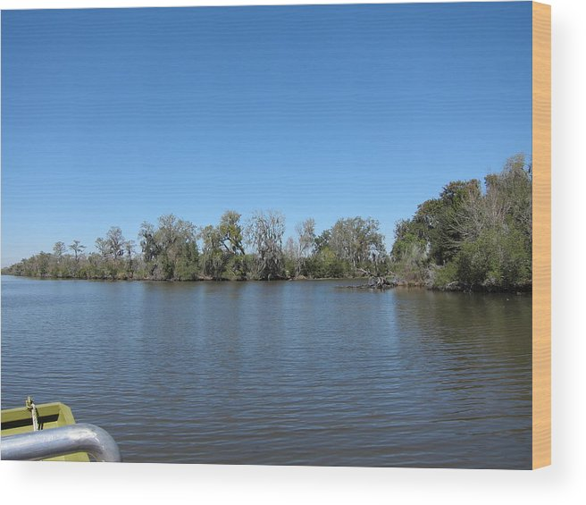 New Wood Print featuring the photograph New Orleans - Swamp Boat Ride - 1212155 by DC Photographer