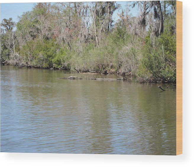 New Wood Print featuring the photograph New Orleans - Swamp Boat Ride - 1212157 by DC Photographer