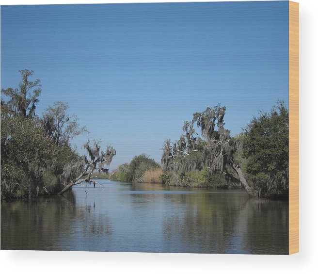 New Wood Print featuring the photograph New Orleans - Swamp Boat Ride - 121245 by DC Photographer