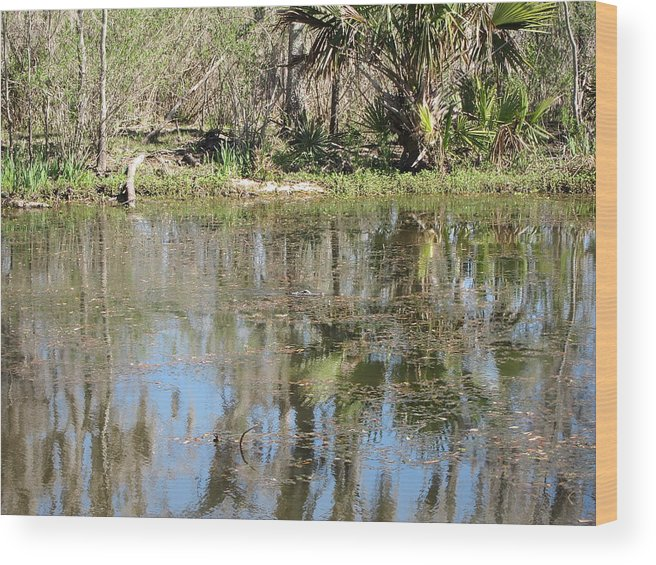 New Wood Print featuring the photograph New Orleans - Swamp Boat Ride - 121249 by DC Photographer