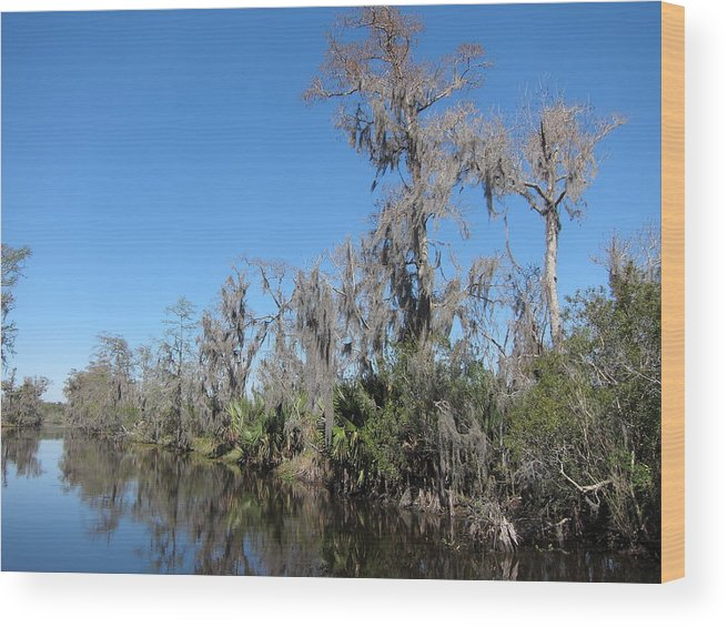 New Wood Print featuring the photograph New Orleans - Swamp Boat Ride - 121295 by DC Photographer