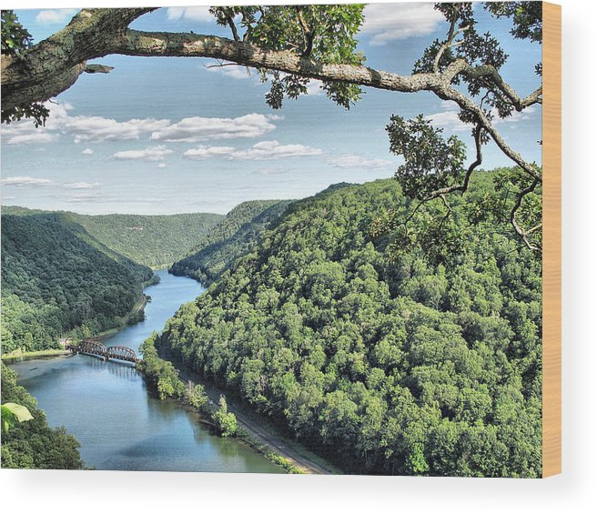 New River Wood Print featuring the photograph New River by Monnie Ryan