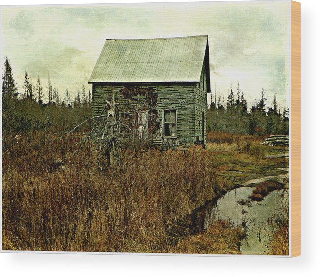 House Abandoned Old Rundown Fixer-up Country Back-roads Northwest Ontario Wood Print featuring the photograph Nobody's Home by Dianne Lacourciere