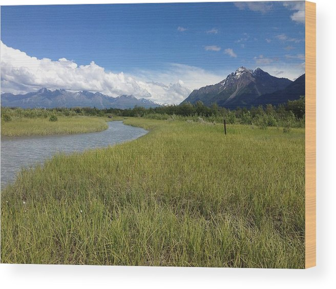 Reflection Lake Wood Print featuring the photograph Off The Beaten Path by Terri Pfister