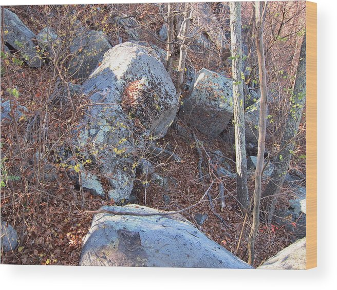 Old Wood Print featuring the photograph Old Rag Hiking Trail - 121220 by DC Photographer